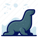 animals, aquatic, nautical, ocean, seal, wildlife icon