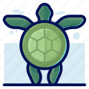 animals, aquatic, nautical, ocean, turtle, wildlife icon
