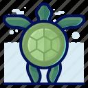 animals, aquatic, nautical, ocean, turtle, wildlife icon