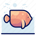 animals, aquatic, fish, nautical, ocean, wildlife icon