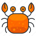 animal, aquatic, crab, marine, nautical, sea, seafood icon