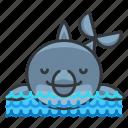 animal, aquatic, dolphin, marine, nautical, ocean, sea