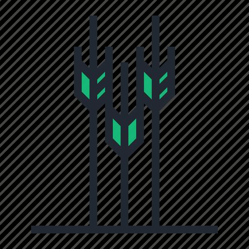 archery, arrow, bow, green, sport, target icon