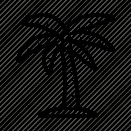 nature, palm, travel, tree icon