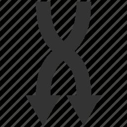 arrows, down, exchange, mix, random, replace, shuffle icon