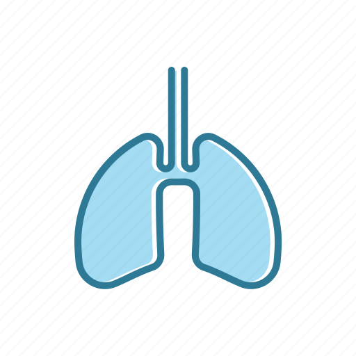 astma, line, lungs, thin icon