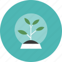 astronomy, innovation, plant, science, space, technology, tree icon