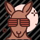 animal, face, glass, kangaroo icon