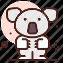 animal, koala, zoo