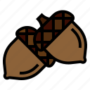 acorn, autumn, chestnut, fall, oak, seed icon