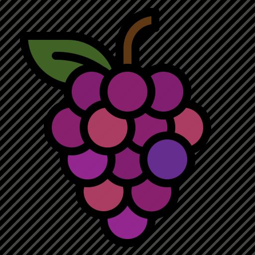 fruit, grape, grapes, wine icon