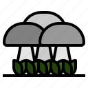 fungus, mushroom, mushrooms, oyster, toadstool, vegetable icon