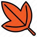 grow, harvest, herb, leaf, leaves, tea icon
