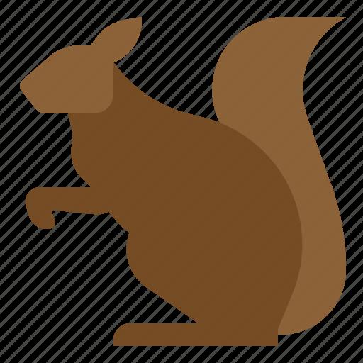 Animal, rodent, sciurus, squirrel icon - Download on Iconfinder