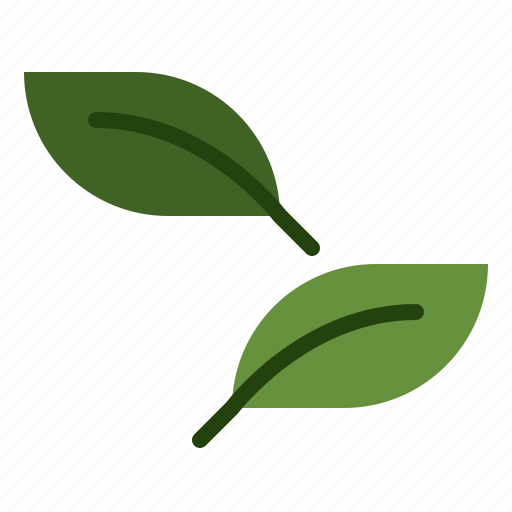Eco, environment, leaf, nature icon - Download on Iconfinder