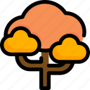 autumn, forest, leaf, nature, plant, season, tree icon