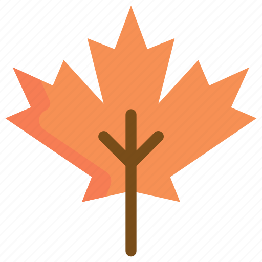 autumn, leaf, maple, nature, plant, season, tree icon