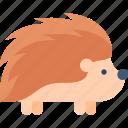 animal, hedgehog, nature, wildlife icon