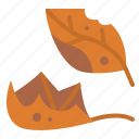 falling, dry, leaf, leaves icon