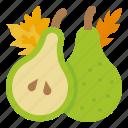 pear, food, diet, vegan, vegetarian, healthy, vegetable