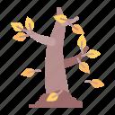 tree, fall, leaves, autumn