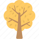 autumn, generic tree, tree, tree in autumn, yellow leaves icon