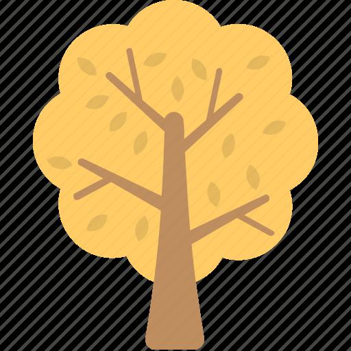 autumn, generic tree, tree, tree in autumn, yellow leaves icon