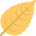 autumn leaf, dry leaf, leaf, sweet birch, yellow leaf icon