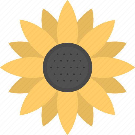 common sunflower, flower, helianthus, sunflower, yellow flower icon