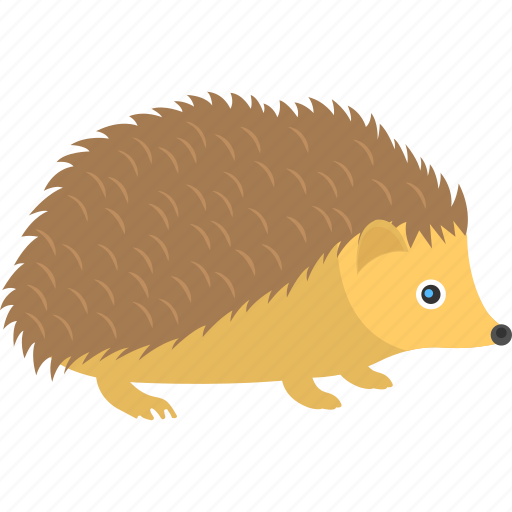 animal, animal with needles, hedgehog, porcupine, spiny mammal icon