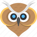 animal, bird, bird face, cartoon owl, owl face icon