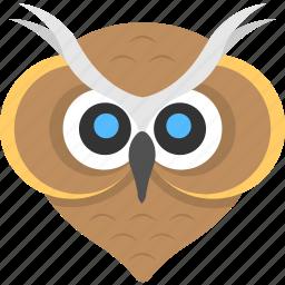 animal, bird, bird face, cartoon owl, owl face icon
