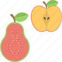 apple, fruits, guava, half of apple, half of guava icon