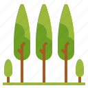 ecology, landscape, pines, trees, woods icon