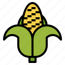 cereal, corn, food, healthy, organic, vegetarian icon