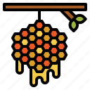 bee, beehive, farming, honey, nature icon