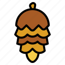 autumn, cone, nature, nut, pine icon
