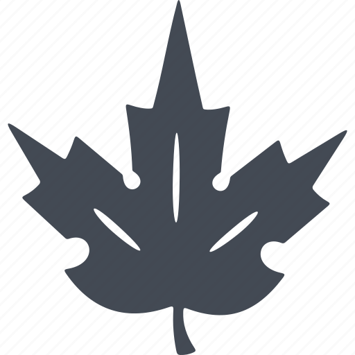 autumn, maple leaf, nature, sheet, tree icon