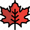 autumn, leaf, maple, red, season icon