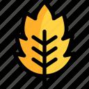 autumn, leaf, season, yellow