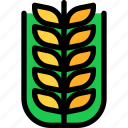 agriculture, autumn, farm, season, wheat
