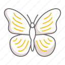 butterfly, insect, nature, animal, environment