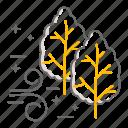 oak tree, maple tree, acer, wind, breeze, autumn