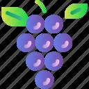 fresh, fruit, grape, healthy, organic