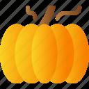 autumn, farming, food, halloween, pumpkin, vegetable