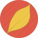 autumn, fall, leaf, leaves icon