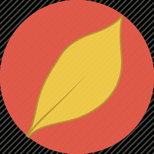 autumn, fall, leaf, leaves icon