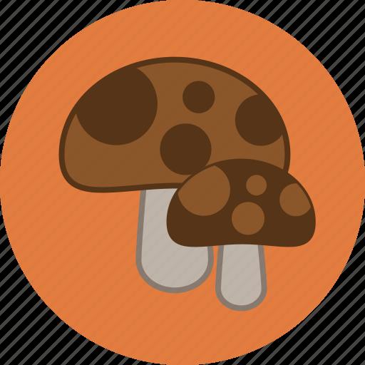 autumn, fall, fungus, mushrooms icon