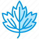 guelder, leaf, nature, rose, tree, viburnum icon
