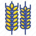 barley, branch, food, leaves, wheat icon